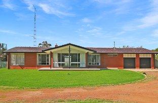 Picture of 97 Yanco Avenue, Leeton NSW 2705