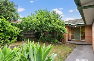 Picture of 13 Tralee Circuit, Narre Warren VIC 3805