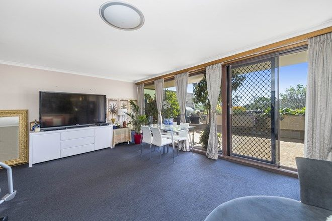 Picture of 6/30 Gatton Street, FARRER ACT 2607