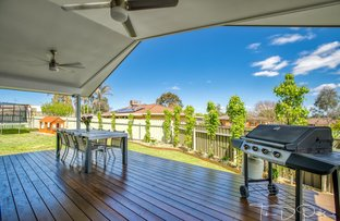 Picture of 3 Erica Court, Thurgoona NSW 2640