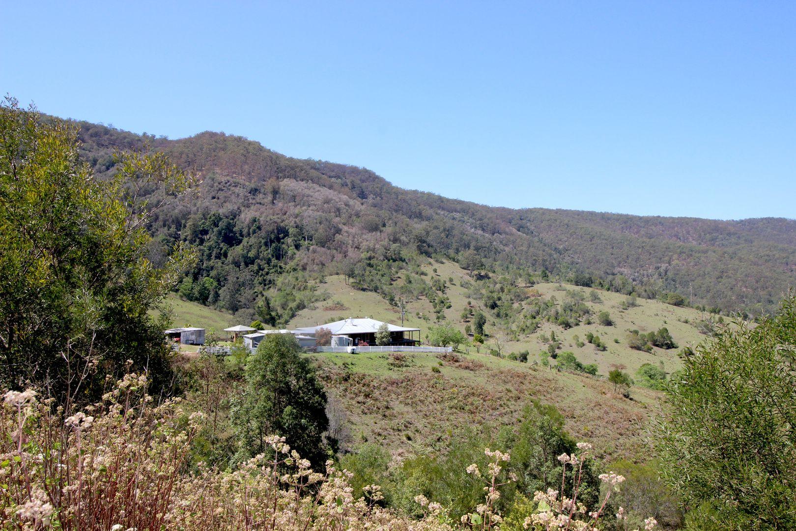 154 Inlet Road, Birdwood NSW 2446, Image 0
