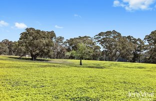 Picture of Lot 1 Musical Gully Road, Waterloo VIC 3373