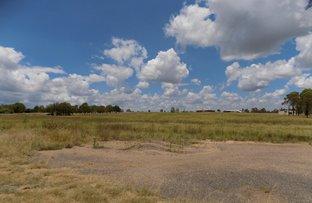 Picture of Lot 69 Ellesmere Road North, Ellesmere QLD 4610