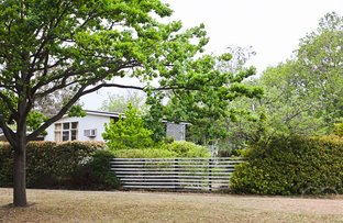 Picture of 10 Gillen Street, Ainslie ACT 2602