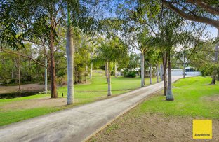 31 Oakwood Street, Capalaba QLD 4157