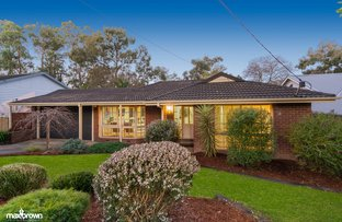Picture of 13 Boxtree Road, Montrose VIC 3765