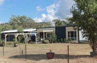 - GULF ROAD, Emmaville NSW 2371