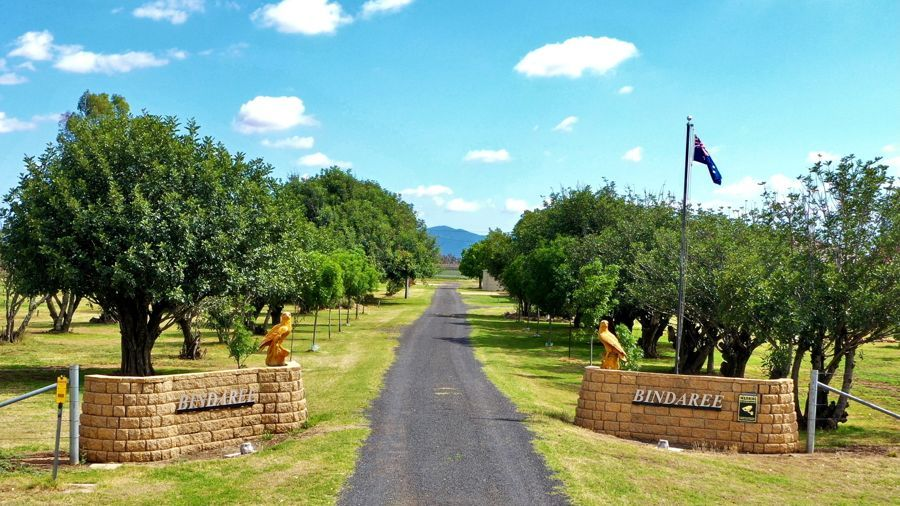 """Bindaree"" 43 Orange Grove Rd, Gunnedah NSW 2380, Image 1"