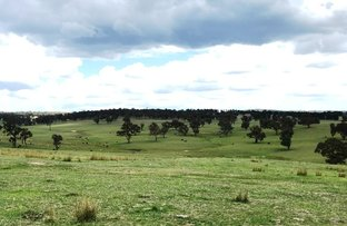 Picture of Oxley Hwy, Walcha NSW 2354