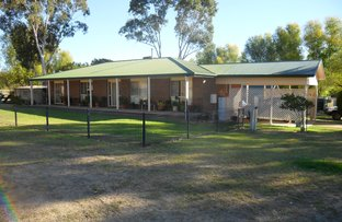 Picture of 4639 Olympic Way South, Young NSW 2594