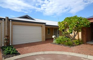 Picture of 46/58 Canna Drive, Canning Vale WA 6155