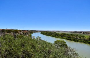 Picture of Lot 1 & Lot 2 121 Zadow Road, Caloote SA 5254