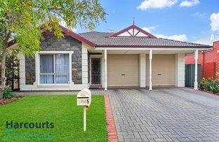 Picture of 5 Petrel Crescent, Mawson Lakes SA 5095