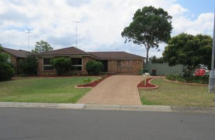 Picture of 26 Bellini Place, St Clair NSW 2759