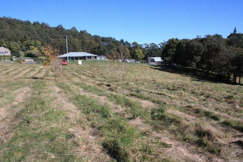 137 Knox Drive, South Spreyton TAS 7310, Image 2
