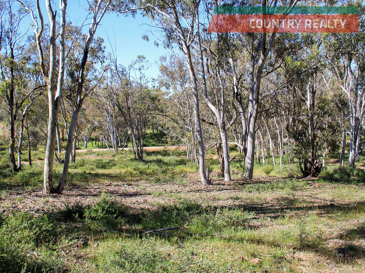 325 Coondle West Road, Toodyay WA 6566, Image 2