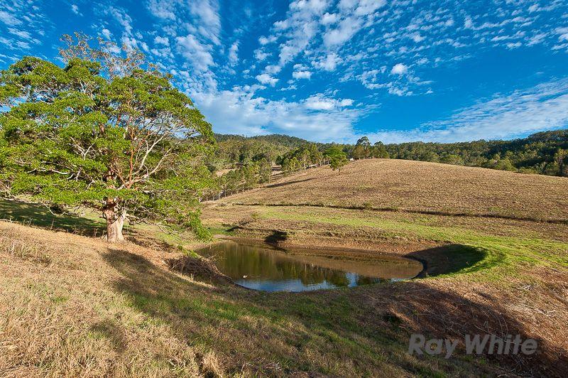 Macadamia Drive, Laceys Creek QLD 4521, Image 2