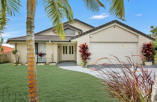 Picture of 14 Daintree Drive, Parkwood QLD 4214