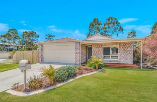 Picture of 2 Waterline Crescent, Waterford QLD 4133