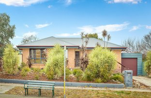 Picture of 8 Kinsella Street, Higgins ACT 2615