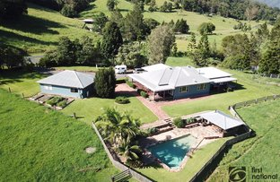 Picture of 350 South Island Loop Road, Upper Orara NSW 2450