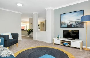 Picture of 166A Herbert St, Doubleview WA 6018