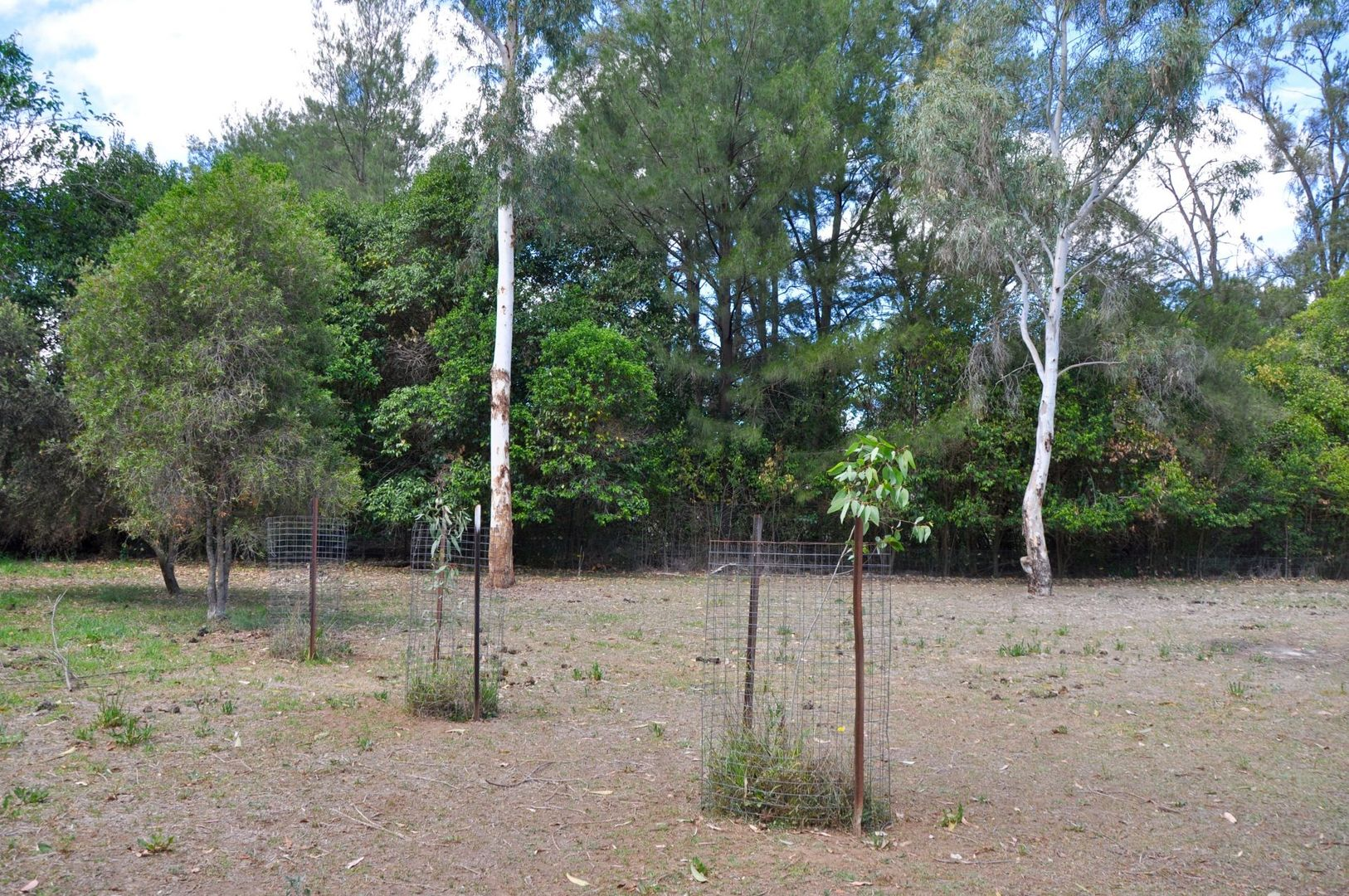 Lot 11-12 Frederick Street, Woolomin NSW 2340, Image 2