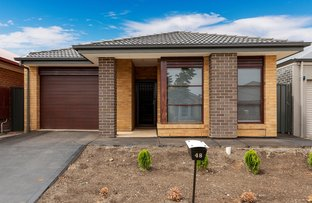 Picture of 48 Margaret St, Blakeview SA 5114