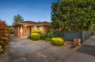 Picture of 1/129 Ivanhoe Parade, Ivanhoe VIC 3079