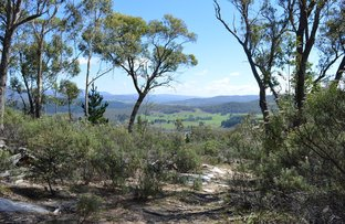 Lot 208 Foggy Forest Drive, Anembo NSW 2621