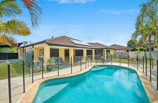 Picture of 29 Leopardwood Circuit, Robina QLD 4226