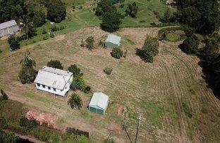 Picture of 566 East Feluga Road, East Feluga QLD 4854