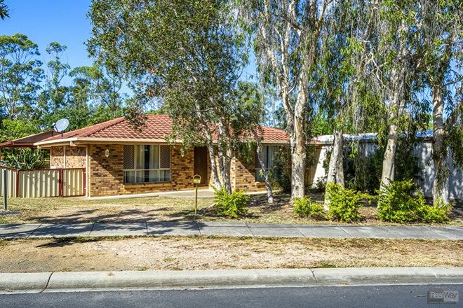 Picture of 6 Flame Tree Court, WALLOON QLD 4306