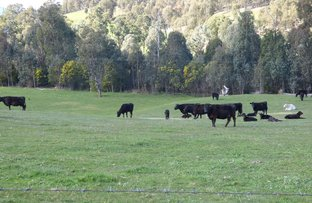 Picture of Myrtleford VIC 3737