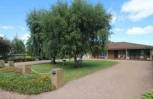 Picture of 69 Thomson Street, Terang VIC 3264