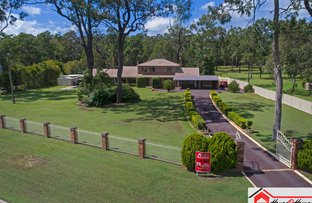 Picture of 5 Beausang Place, Ormeau QLD 4208