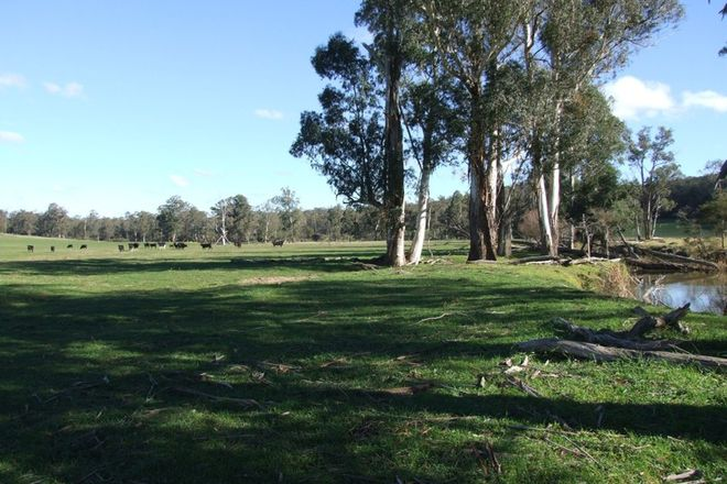 Picture of 288 Holloways Road, BUCHAN SOUTH VIC 3885