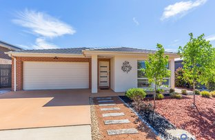 31 Ken Tribe Street, Coombs ACT 2611