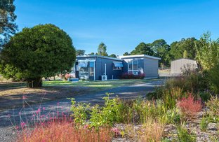 Picture of 1A Thompson Street, Elphinstone VIC 3448