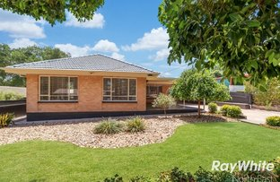 Picture of 13 Rednall Street, Tea Tree Gully SA 5091