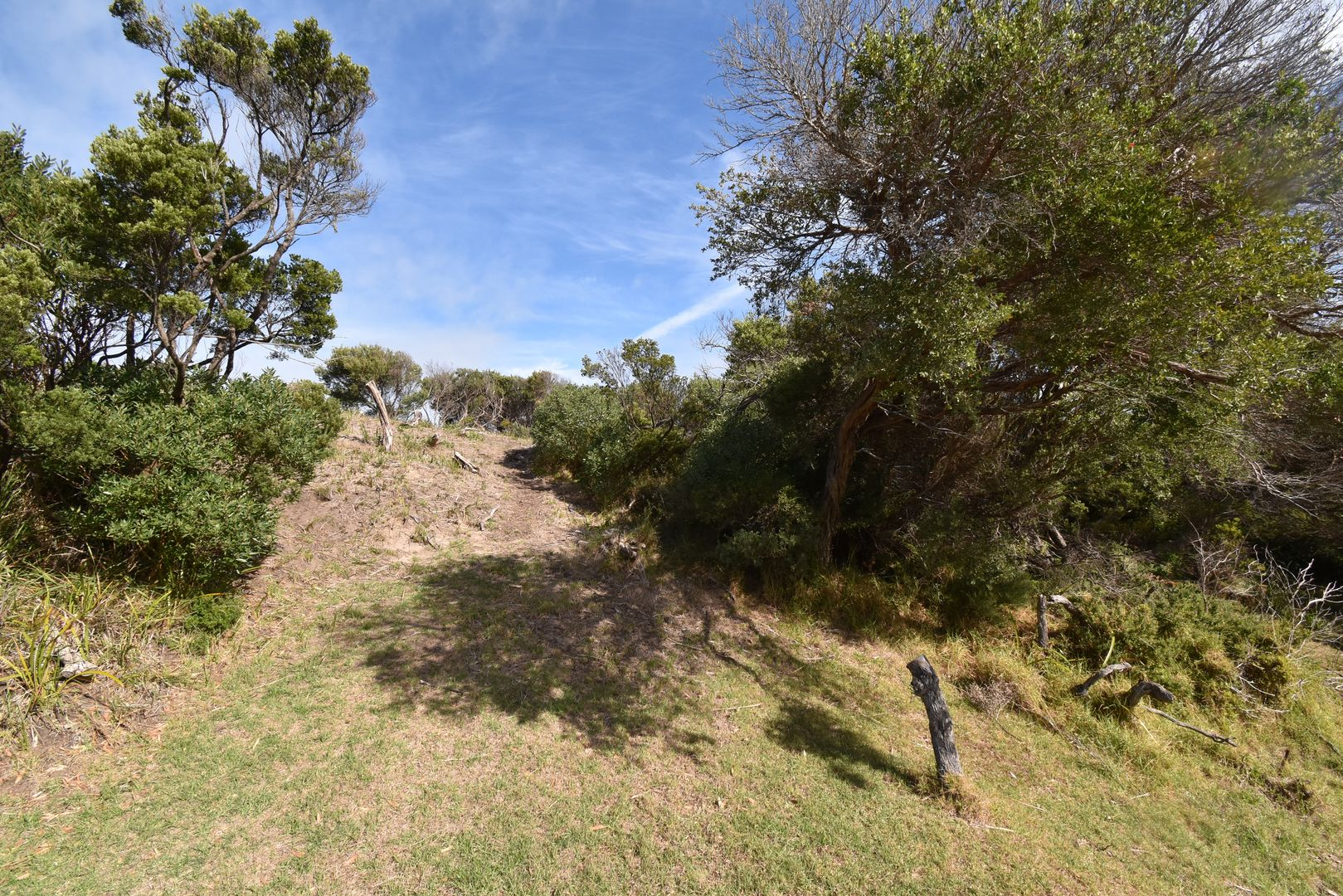 2 BEECH COURT, Sandy Point VIC 3959, Image 2