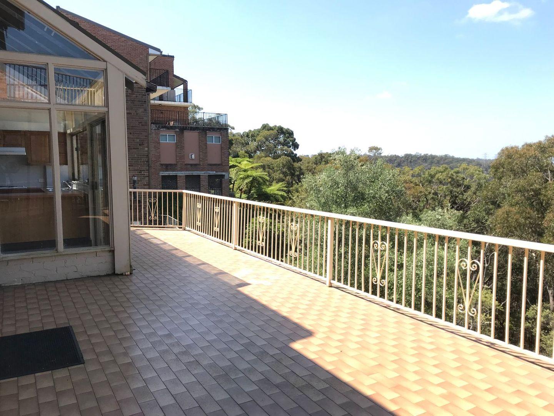 143A Koola Avenue, East Killara NSW 2071, Image 2