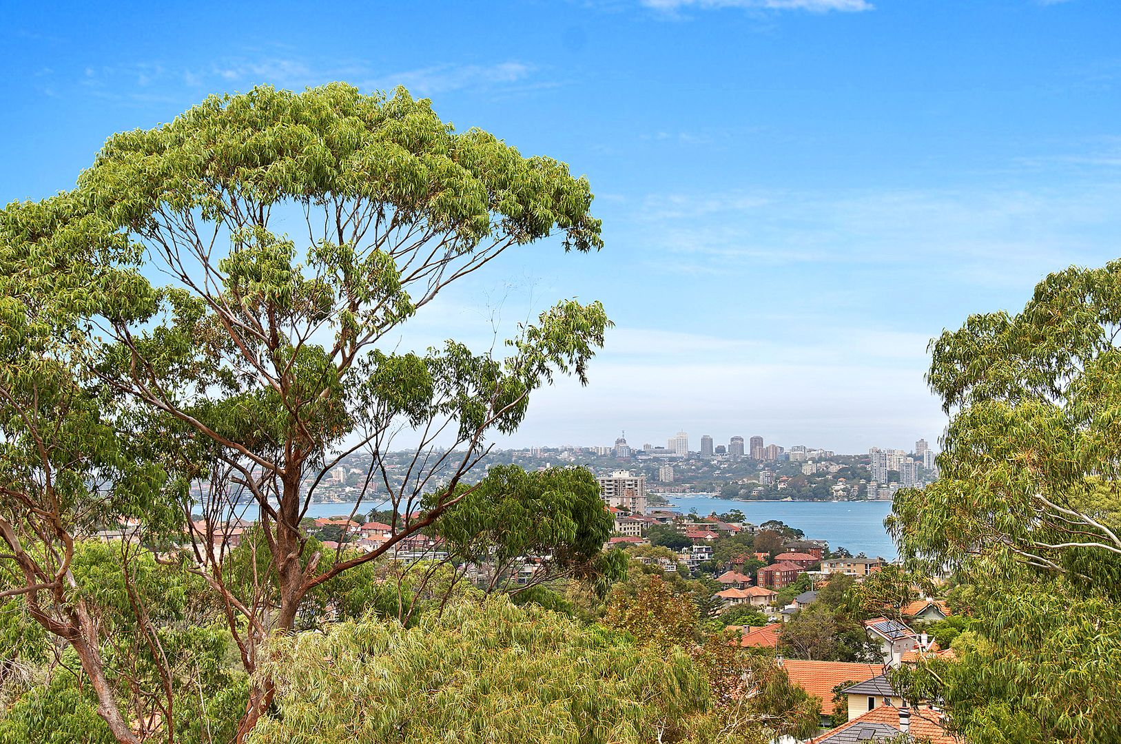 16/94A Spofforth Street, Cremorne NSW 2090, Image 0