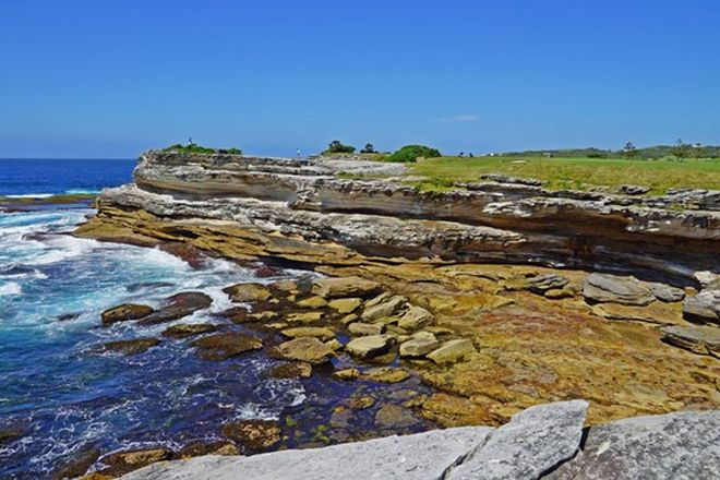 Picture of LITTLE BAY NSW 2036