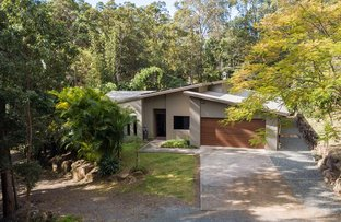 Picture of 57 Fern Gully Place, Mooloolah Valley QLD 4553