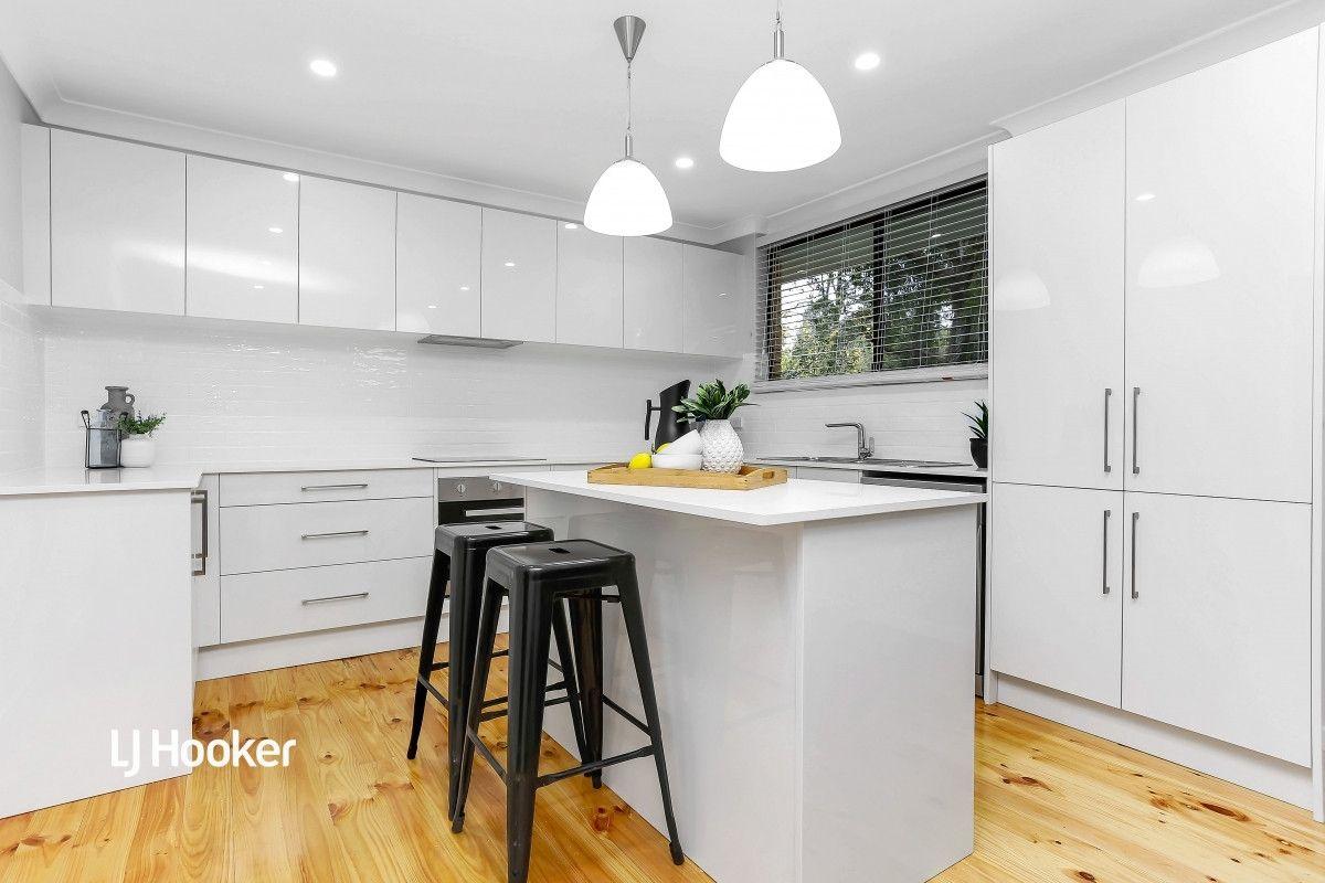19 Mintanta Drive, Banksia Park SA 5091, Image 2