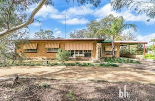Picture of 15 Hardy Street, Mannum SA 5238