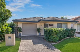 Picture of 3 Carpenteria Close, Kirwan QLD 4817