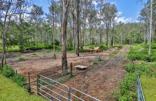 Picture of 31-39 Eucalypt Road, Logan Village QLD 4207