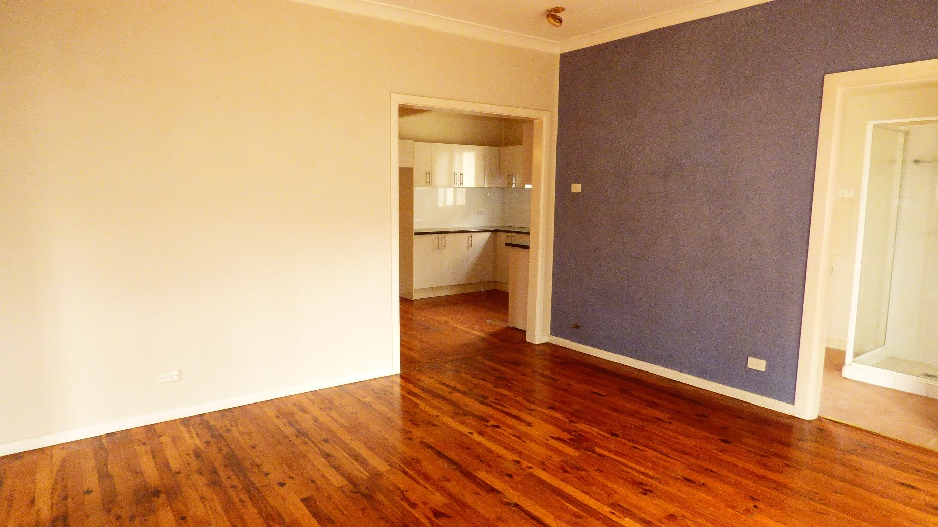 14 DOWNING AVE, Regents Park NSW 2143, Image 1
